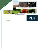 trabajo de campo (2)((Autosaved-304590533424659312)).asd