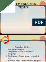 Ppt Testis Anfisman II.pptx,,,,,