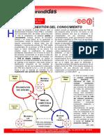 TPM estrategia de desarrollo.pdf