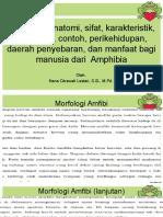 Zoologi Vertebrata Bab 8. Morfologi, Anatomi, Sifat, Karakteristik Amphibia
