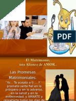 Las 7 Termitas Del Matrimonio Mmm