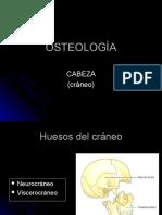 Huesos Cabeza