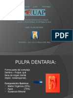 Endodoncia Clase 2