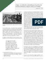 Tratamiento Ecologico de Aguas Contaminadas en Arequipa