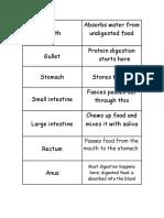 Digestive System Cards
