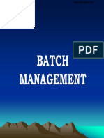 PP-BatchManagement-Presentation.pdf