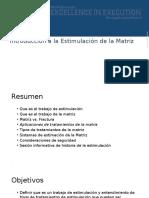 Introducción a La Estimulación de La Matriz (TRADUCIDO)