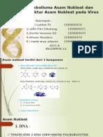 Metabolisme Asam Nukleat Dan Struktur Asam Nukleat Pada Virus