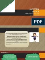 Auditoria Medica Funmendamentos de Auditoria