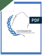 Presentation File Lyon MUN 2016