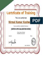 Training certificate.doc