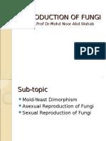 4.Reproduction of Fungi