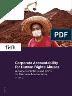 corporate_accountability_guide_version_web.pdf