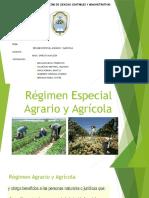 Régimen Especial Agragio y Agrícola