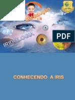 Aula  Iridologia Introdução