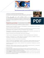 Textos para discussão de questões sobre meio ambiente e sustentabilidade