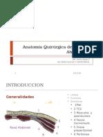 78828581 Anatomia Quirurgica de La Pared Abdominal