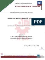 Programa Institucional de Tutorias Docto Rector