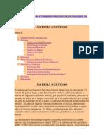 SISGTEMA NERVIOSO 2.docx