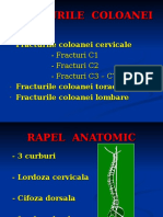 FRACTURILE  COLOANEeI