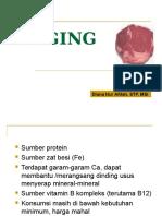 Daging Ibm
