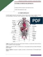 Anatomia e Fisiologia Humana Emerson1