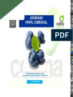 Arandano.pdf