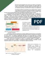 Informe Escrito Metabolismo Org Altas y Bajas Temp-1