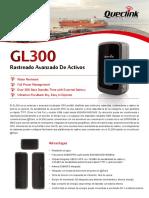 GL300 ES 20130607