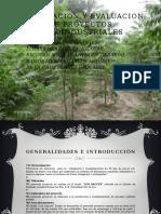 Formulacion y evaluacion de proyectos agroindustriales.pptx
