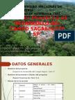Eia Del Proyecto de Desarrollo Del Campo Sagari-lote