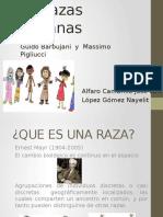 Las-razas-humanas Jose Luis Alfaro.pptx