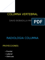 c. vertebral.ppt