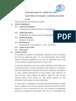 PLAN DE taller cachimbos.docx