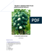 886buenaspracticaspapaya.pdf