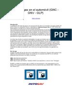 2 Uso de Gas en El Automóvil (GNC - GNV - GLP)