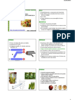 Frutas e Hortaliças [Aula Nº 02]