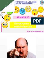 Sentimientos y Emociones 2014-i