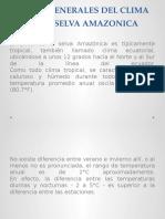Clima de La Selva Amazónica-1