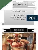 FISIOLOGI MANUSIA.ppt