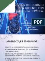 Gestión Del Cuidado en Paciente Con Patología Hepática 2015