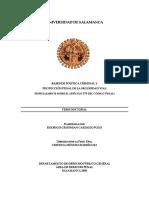 Cardozo Pozo Politica Criminal Tesis Doctoral.