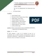 informe de mecanica de suelos I