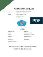 Laporan Praktikum PBA (Tanaman Pangan & Hortikultura)1