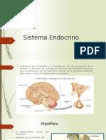 Exposi Sistema Endocrino