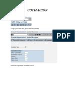 Manual de Cotizacion SAP Paso a Paso