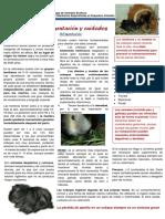 gmcae_cuidados_cobayas