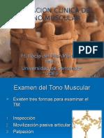 Examen Del Tono Muscular Escalas