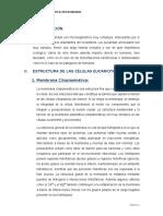 Célula Eucariota-fisio y Genetica Bacteriana