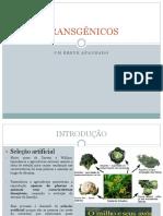 Transgênicos - Ciências 2